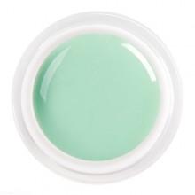 Gel Color Pastel Green 5ml.