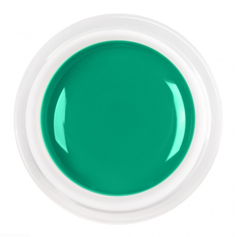 Gel Color Mint Green 5ml.