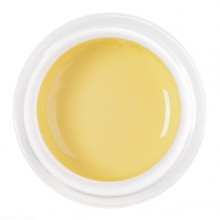 Gel Color Pastel Yellow 5ml.